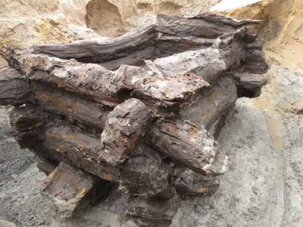 Fotografie detailu studny z doby železné